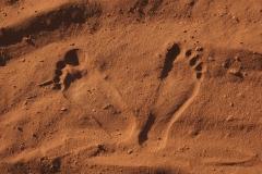 CHRISTIAN_VALENTIN_IMG_2949_CS6_walk_on_the_moonweb_PSE9