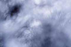 JEAN_LUC_LEBLANC_hiver_flou_DSC2616-OILYON