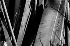 Confinement-Jardins-06_DSC7907