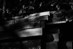 Confinement-Jardins-14_DSC8178